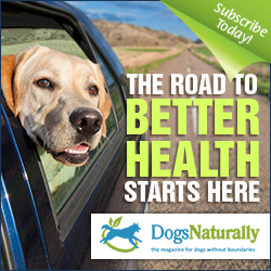 Dogs Naturally Road to Better Health