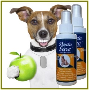Natural Wonders Pets DentaSure Dog Image