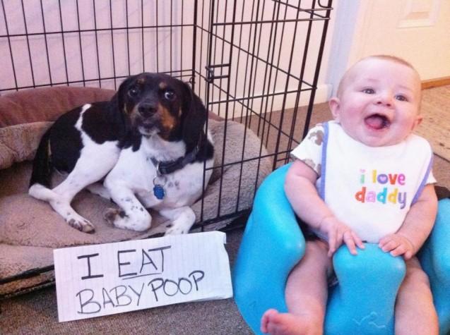Shaming Ate Baby Poop 2013