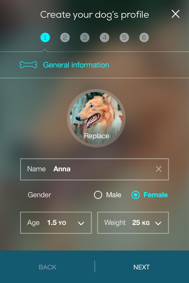 oggii App Info