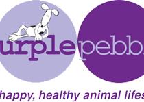 Purple Pebble Toys
