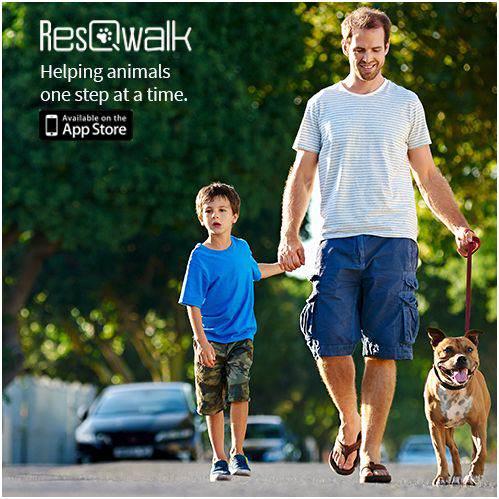Resqwalk 4