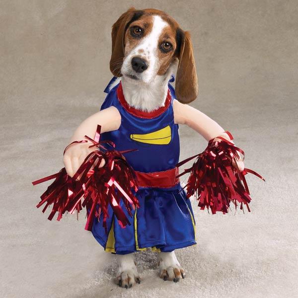 cheerleader Halloween