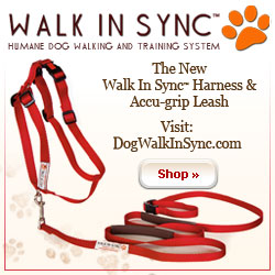 Walk in Sync Harness and Leash