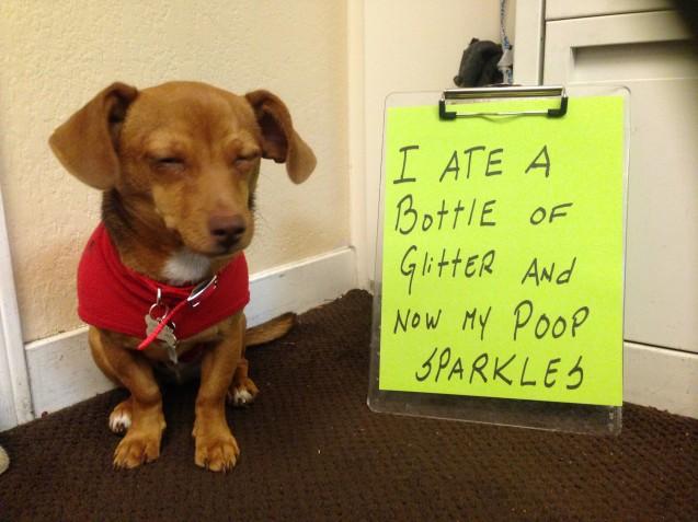 Shaming Glitter