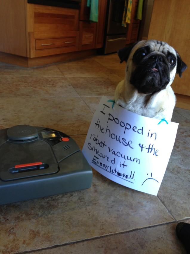 Shaming Poop Vacuum