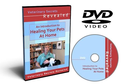 Secrets Healing Home