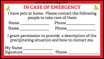 diy emergency card for pet owners essentially dogs