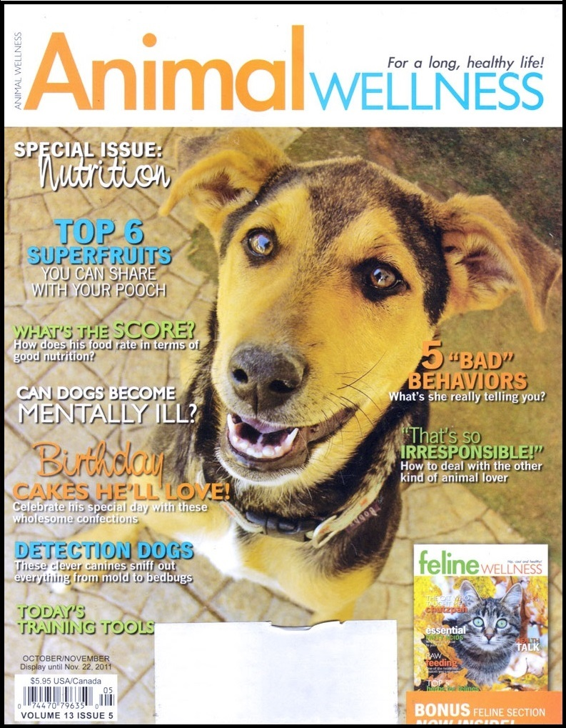 Animal Wellness Magazine Walk in Sync