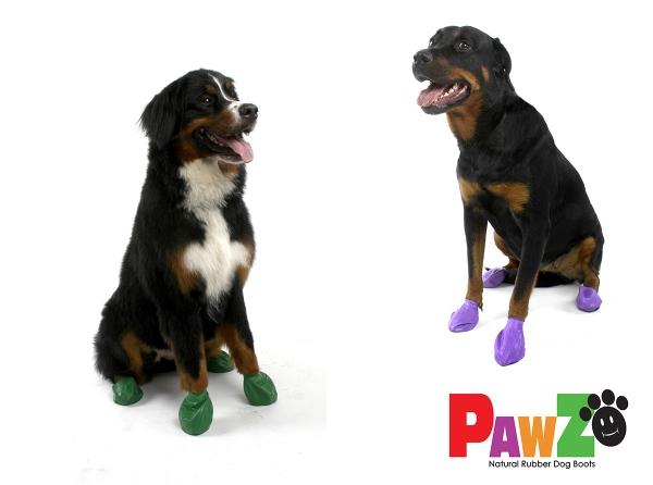 Pawz Big Dogs