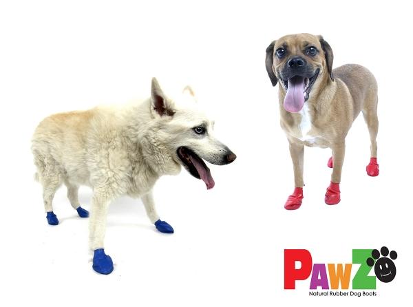 Pawz Medium Dogs