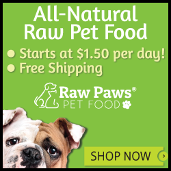 Raw Paws Bulldog - Framed